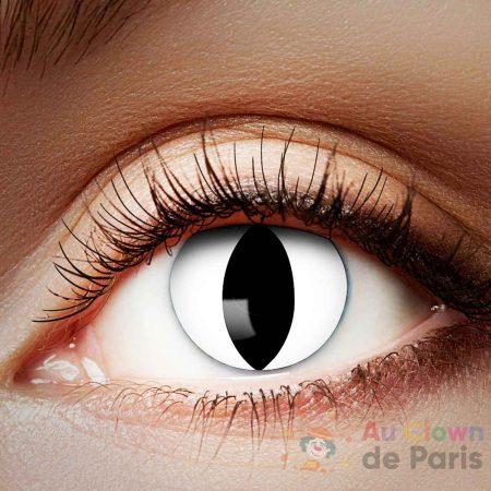 Lentille oeil de chat blanc