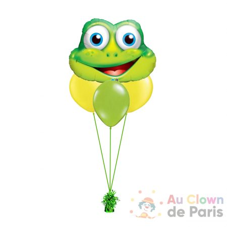 Ballon grenouille hélium Paris