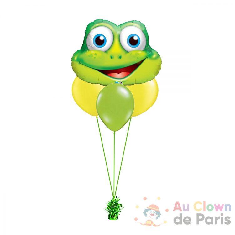 Ballon grenouille hélium Paris