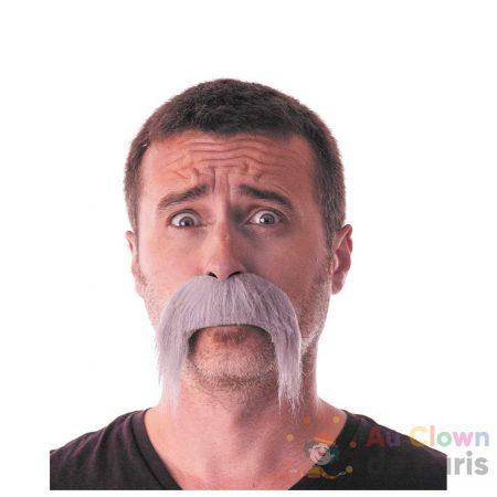 moustache kéké grise